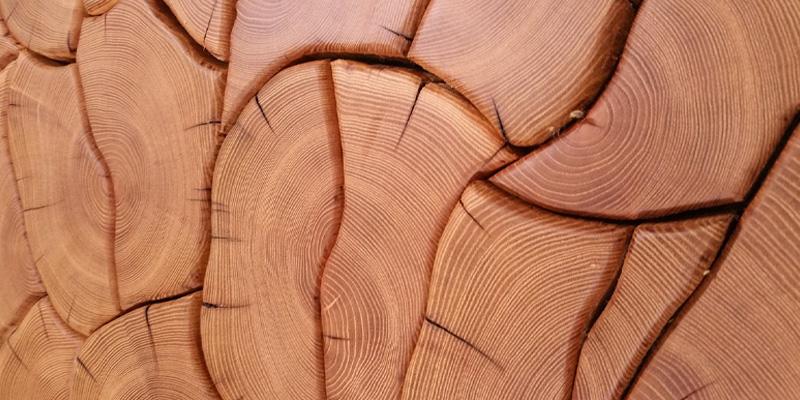 Exotic wood image