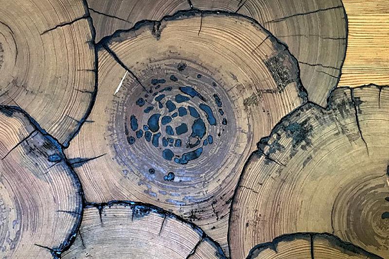 Decorative exotic wood image